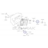 Oprawka Zaworu do Subaru z Silnikami EJ oraz Diesel / 13210AA020