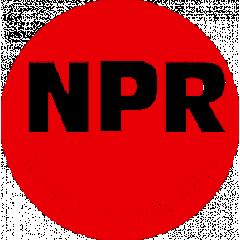NPR Nippon Piston Rings